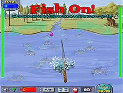 Fishing Champion
