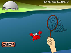 Catch A Crab 1