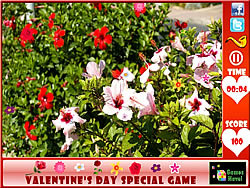 Valentine's Day  Hidden Flowers