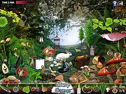 Wonderland 2